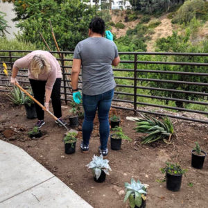 Residents Planting